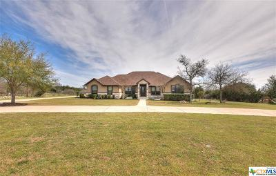 Williamson County Single Family Home For Sale: 149 Landons Way