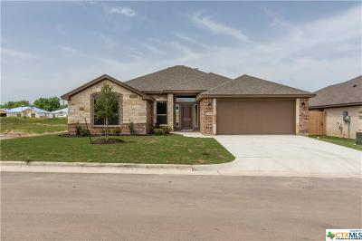 Belton Single Family Home For Sale: 704 Holstein Drive