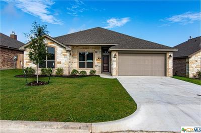 Belton Single Family Home For Sale: 620 Holstein Drive