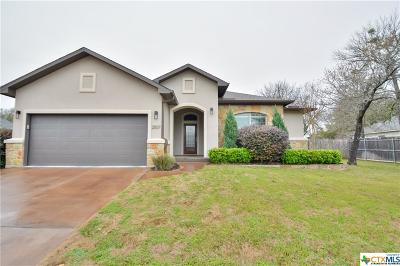 Belton Single Family Home For Sale: 2507 Twin Ridge