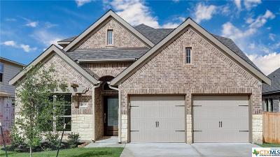 San Antonio Single Family Home For Sale: 14926 Costa Leon