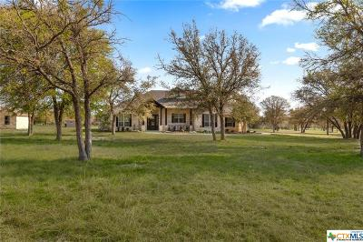 Salado Single Family Home For Sale: 2086 Cheyenne Pass