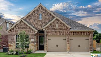 San Antonio Single Family Home For Sale: 14810 Costa Leon