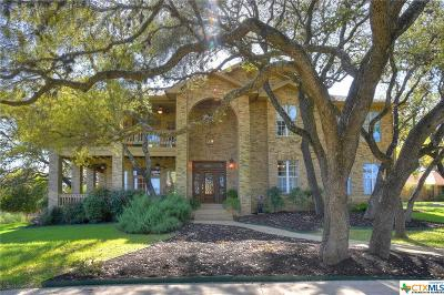 San Marcos Single Family Home For Sale: 721 Willow Ridge