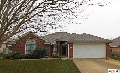 Harker Heights Single Family Home For Sale: 2016 Stonehenge Drive