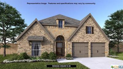 Seguin Single Family Home For Sale: 2989 Grove Terrace