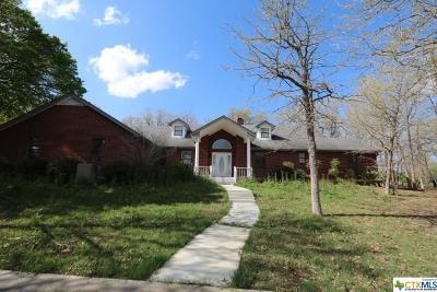 Seguin Single Family Home For Sale: 450 Flint Rock