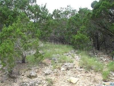Canyon Lake Residential Lots & Land For Sale: 295 Delanoy