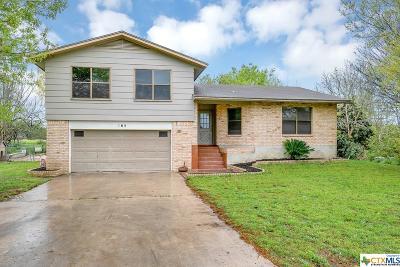 Seguin Single Family Home For Sale: 165 Rio Grande
