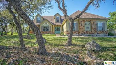 New Braunfels Single Family Home For Sale: 769 River Chase Way