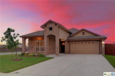 New Braunfels Single Family Home For Sale: 280 Escarpment Oak