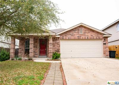 New Braunfels Single Family Home For Sale: 244 Goliad Drive