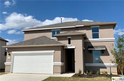 New Braunfels Single Family Home For Sale: 3951 Legend Rock