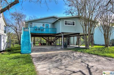 Seguin Single Family Home For Sale: 621 Turtle Lane