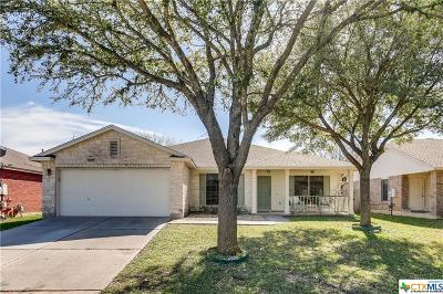 Round Rock TX Single Family Home For Sale: $244,500