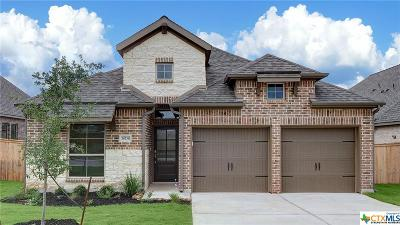 San Antonio Single Family Home For Sale: 14738 Running Wolf