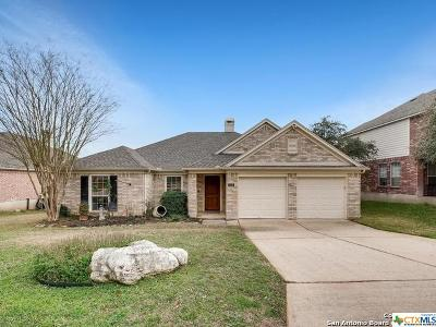 San Antonio Single Family Home For Sale: 522 Parkmont