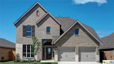 New Braunfels Single Family Home For Sale: 617 Wasser Ranch