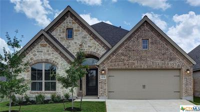 San Antonio Single Family Home For Sale: 14614 Hallows Grove