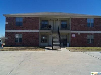 Harker Heights Multi Family Home For Sale: 419 Brittney