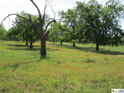 Mills County Residential Lots & Land For Sale: 860 S Sh 16 Highway