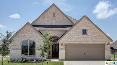 San Antonio Single Family Home For Sale: 14606 Hallows Grove