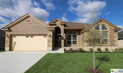 Killeen Single Family Home For Sale: 7604 Pyrite Drive