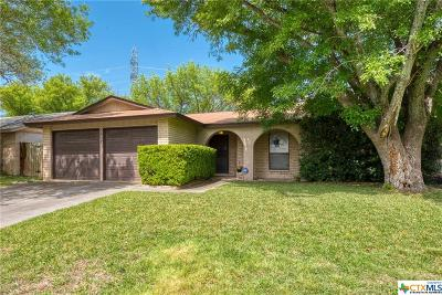 San Antonio Single Family Home For Sale: 3827 Briar Hollow