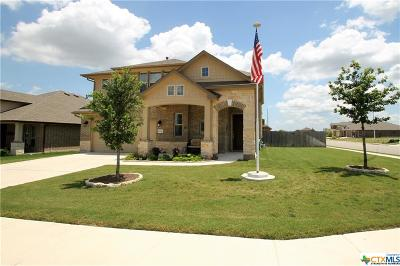 Leander TX Single Family Home For Sale: $325,000