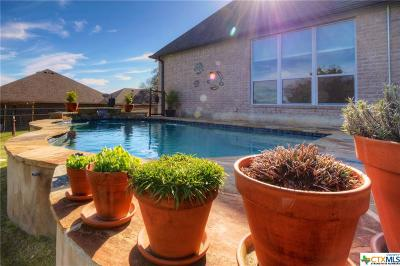 New Braunfels Single Family Home For Sale: 580 Apex
