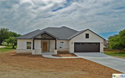 Burnet County Single Family Home For Sale: 201 Alexander Avenue