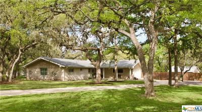 San Marcos Single Family Home For Sale: 910 Willow Creek