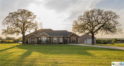 Coryell County Single Family Home For Sale: 800 River Road