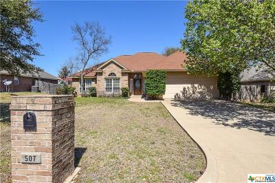 Belton Single Family Home For Sale: 507 Kinney Drive
