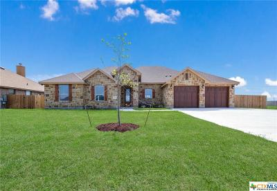 Seguin Single Family Home For Sale: 1519 Prairie Pass