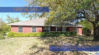 Kempner Single Family Home For Sale: 235 County Road 4964