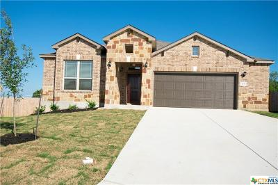 New Braunfels TX Single Family Home For Sale: $277,013