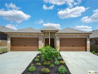 New Braunfels Multi Family Home For Sale: 215/217 Kasper Way #A-B