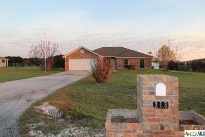 Kempner TX Single Family Home For Sale: $223,900