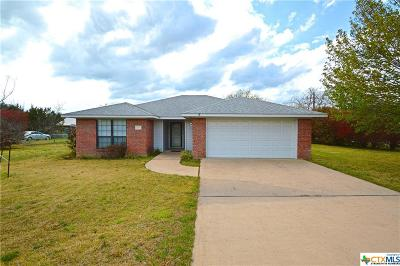 Burnet County Single Family Home For Sale: 1140 Sparrow