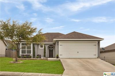 New Braunfels Single Family Home For Sale: 1623 Sunspur