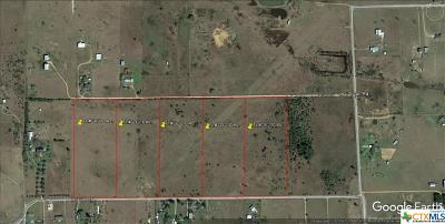 Residential Lots & Land For Sale: 3006 Levi Sloan (Tract E) Road
