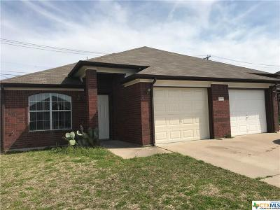 Killeen Single Family Home For Sale: 3804 Hitchrock #A&B