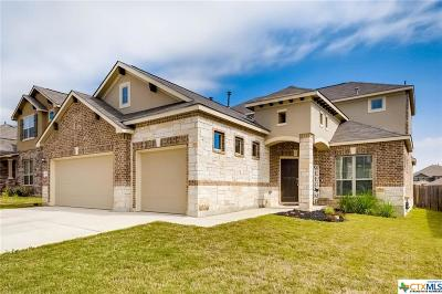 New Braunfels Single Family Home For Sale: 341 Green Heron
