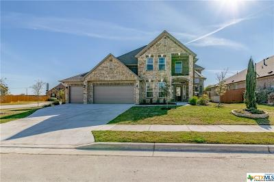 Pflugerville Single Family Home For Sale: 3717 Gildas Corner