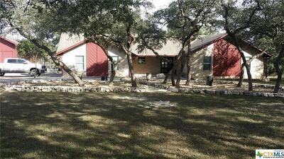 Comal County Single Family Home For Sale: 125 Hill Haven