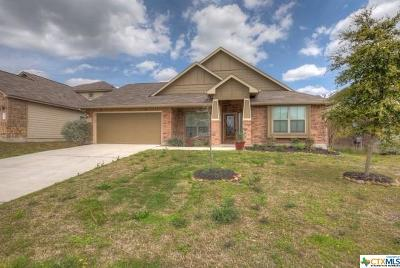 Single Family Home For Sale: 728 Great Cloud