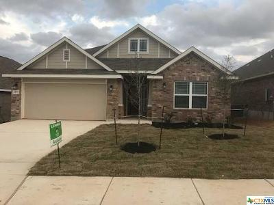 Comal County Single Family Home For Sale: 2977 Sunset Summit