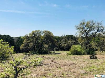 Bell County, Burnet County, Coryell County, Lampasas County, Llano County, Mills County, San Saba County, Williamson County, Hamilton County Residential Lots & Land For Sale: 10653 E Trimmier Road