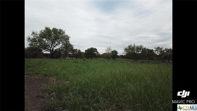 Bell County, Burnet County, Coryell County, Lampasas County, Llano County, McLennan County, Mills County, San Saba County, Williamson County Residential Lots & Land For Sale: 0000 Iron Bridge Lane